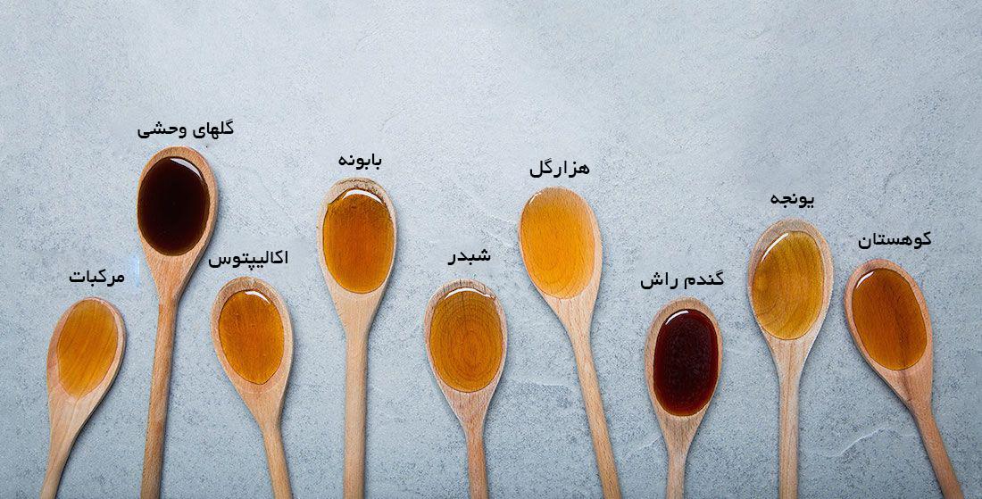 خواص عسل های مختلف